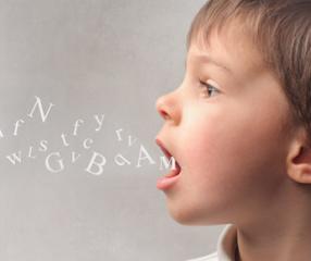 A importância da fala